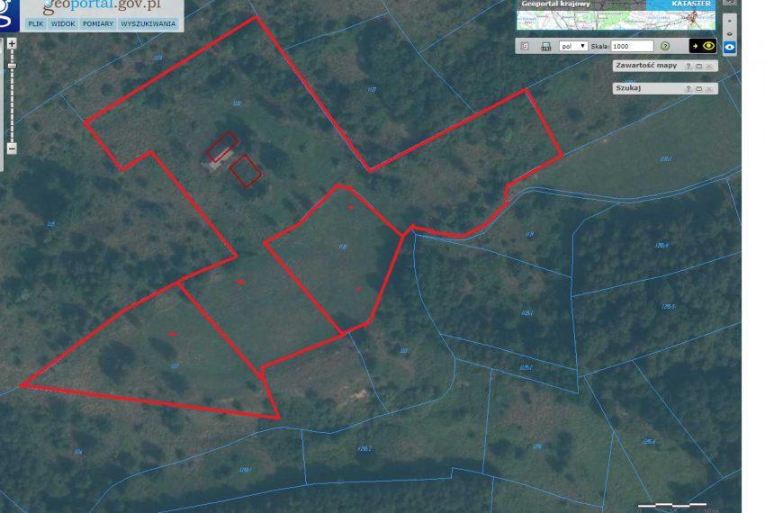 Borek Nowy mapa geoportal